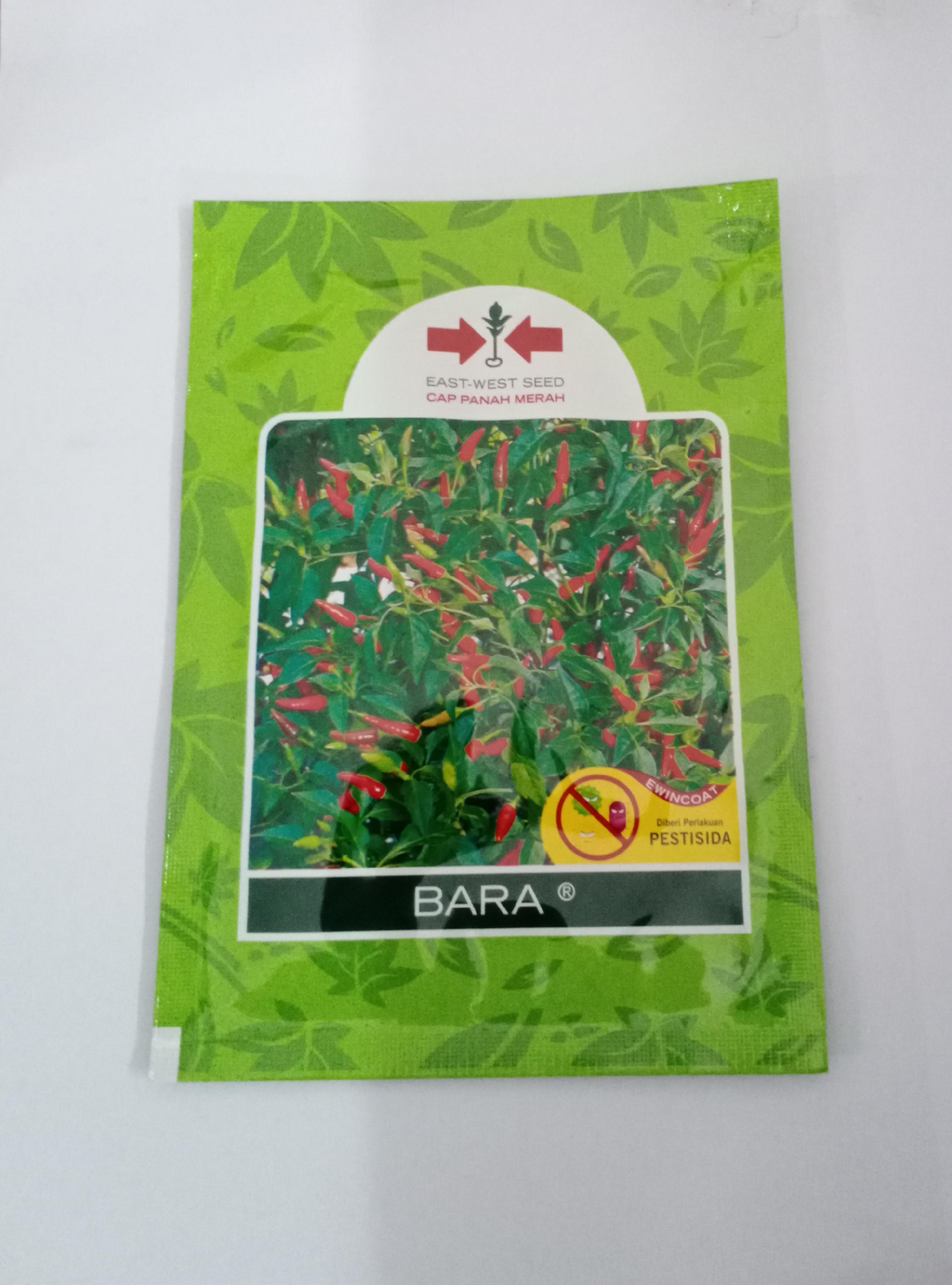 Benih Cili Bara - RM35.00