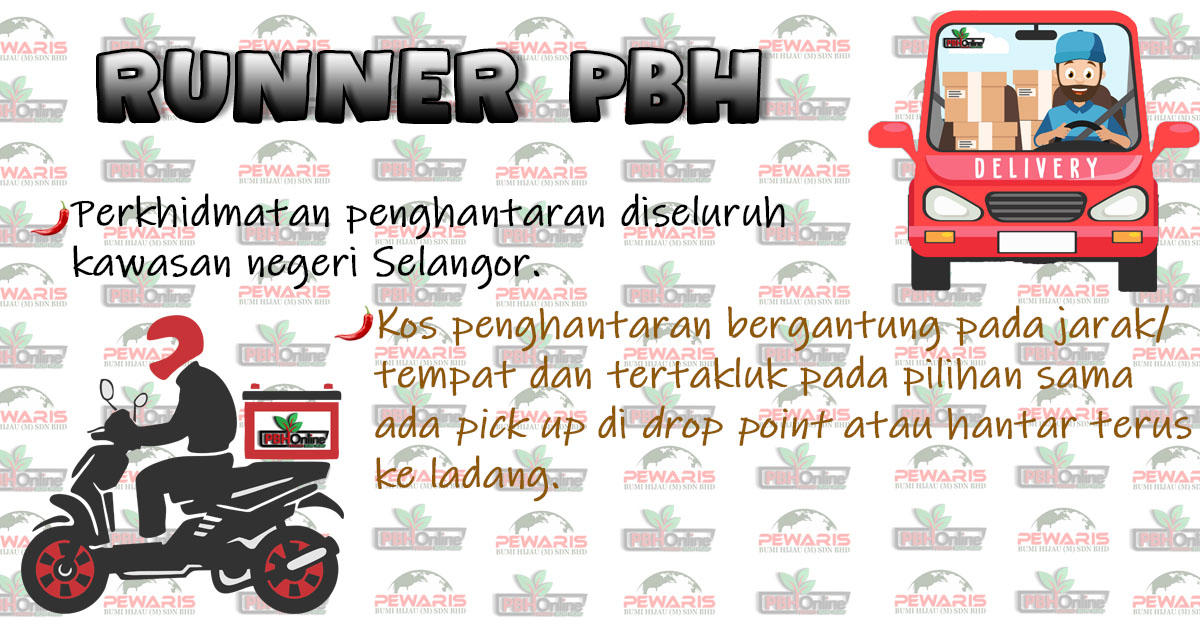 https://pbhonline.net/1592817281pamplet_pbh_runner.jpg