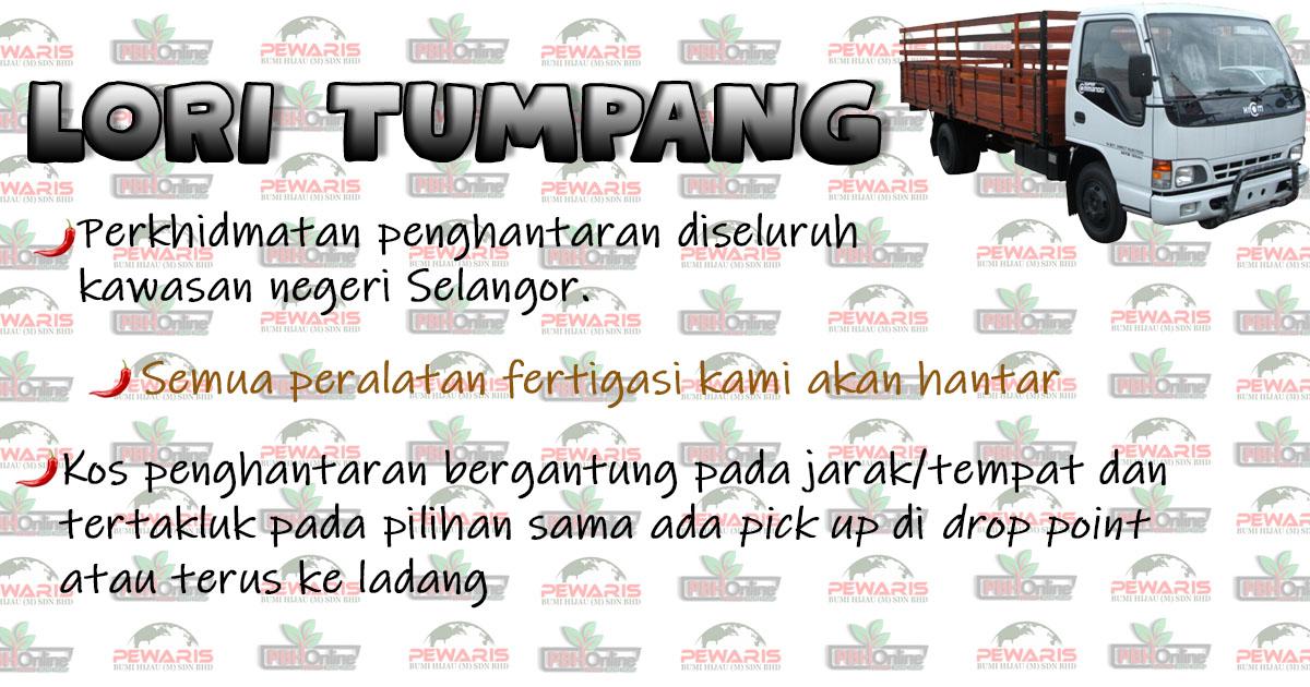 https://pbhonline.net/1594972939pamplet_lori_tumpang_(1).jpg